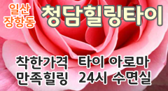 24시 착한가격 일산 청담힐링타이